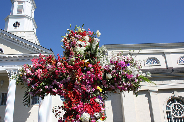 the-flowering-of-the-cross